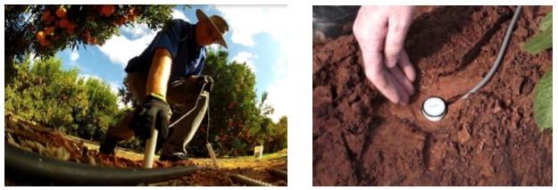 精巧なテーパ構造により土壌と密着
